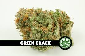 Order Green Crack Cannabis Online Delivery | 4:20 Spot Canada