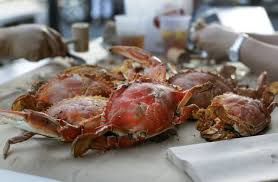 crabs in the DC area ...