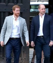 Prince William Harry Reunite Over Princess Diana