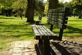 park bench relax outdoors summer