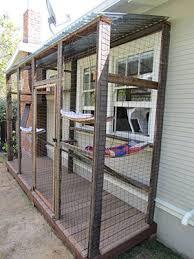Cat Enclosures Marin Humane