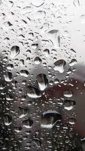 خلفيات مطر جمال المطر في صور عبارات