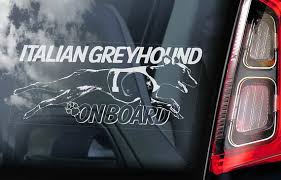 Italian Greyhound On Board Car Window Sticker Levrette Etsy