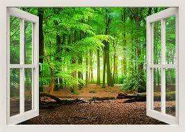 Forest Wall Decal 3d Window Wall Decal Window Frame Nature Etsy