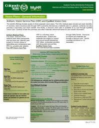 vision plans general information