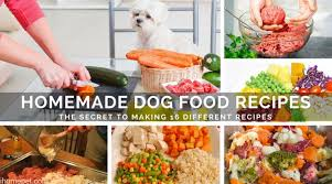 homemade dog food recipes making 16