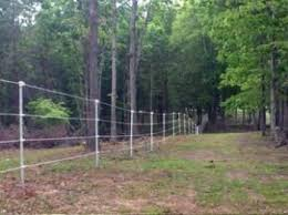 Electric Fencing Ideas That Will Work And Will Fit Your Budget Electric Fence For Cattle Electric Fence Pasture Fencing