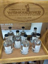 seeing ss wishkah river