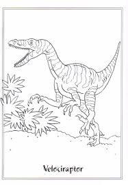 Dinosaurus Kleurplaat Dieren Kleurplaat Animaatjes Nl