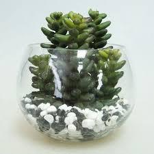 glass bowl small plants fake banana