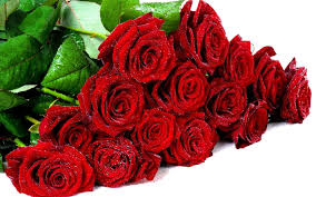 صور ورد طبيعي Red Roses Wallpaper Most Beautiful Flowers Rose