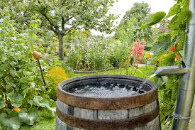 how to make a rain barrel for the garden