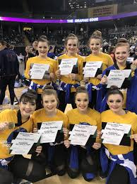 Raiderettes perform at Nationals | Local News | dailyjournalonline.com