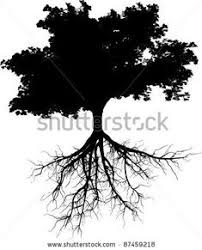7 Best Tree with roots drawing images | Roots tattoo, Tree roots ...