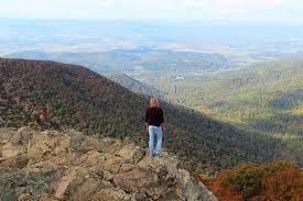 Upper Hawksbill Trail Picture Of Hawksbill Mountain Shenandoah National Park Tripadvisor