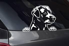 Labrador Decals Stickers Decalboy