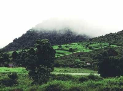 """Image result for winter in daringbadi"""""""
