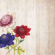 صور لـ ورقة زهور سكرابوكينغ ورود خلفية المجالس