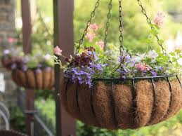 How To Keep Hanging Baskets Moist