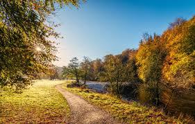 wallpaper autumn the sun rays trees