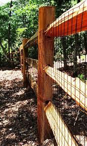 Split Rail Fence Installer Split Rail Fence Cheap Fence Dog Fence