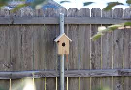 Another Birdhouse Installation Using The Post Host Birdhouse Mounting Kit Bird Houses Birdhouses Bird Feeders Metal Fence Posts