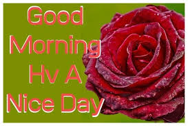 good morning image s wallpaper photo