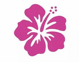 Hibiscus Car Decal Etsy