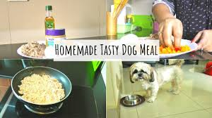 tasty dog meal with en homemade