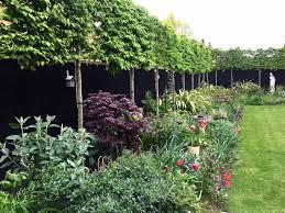 19 Simple Garden Pleached Hedge Black Wooden Fence Border Planting Statue Acer Welch Landscape Design Welch Design