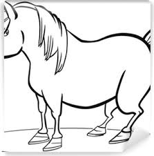 Fotobehang Grappig Paard Cartoon Pixers We Leven Om Te Veranderen