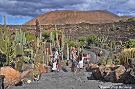 Manrique Tour: geführte tour nach Cueva de los Verdes, Jardín de ...