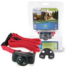 Petsafe Invisible Fences Collars
