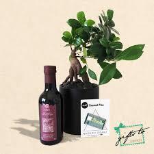 mini lira bonsai gifts to lebanon