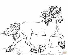 De 17 Beste Afbeeldingen Van Manege Paard Van Sinterklaas Paard