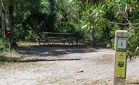 This is a public forest' - News - The St. Augustine Record - St. Augustine,  FL