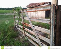 Cattle Gate Left Open Stock Photo Image Of Open Gate 56290048