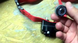 How To Change The Battery Petsafe Wireless Pet Containment System Collar Unboxing Youtube
