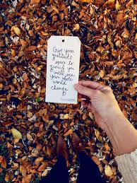 thoughtful gratitude quotes to inspire thankfulness this