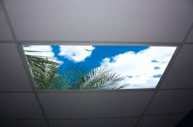 fluorescent light covers exploring the