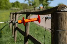 Best Electric Fence For Horses Best Horse Rider