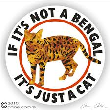 Bengal Decals Stickers A Nickerstickers