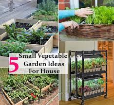 small easy vegetable garden hawk haven