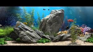 3d fish aquarium 21 9 live wallpaper