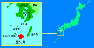 ダイビング魂/屋久島地図