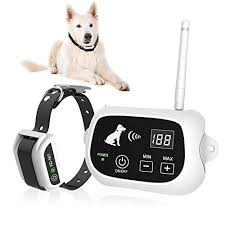 Top 4 Best Wireless Dog Fences 2020 Buyer S Guide Reviews