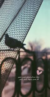 مساء الخير شعر قهوة صور تصويري تصاميم رمزيات Love Quotes