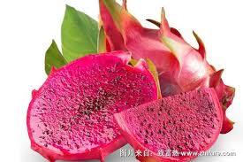 红心火龙果的产地在哪里- 致富热
