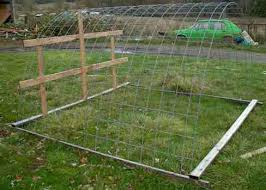Better Than Chicken Tractors Hoop Coops For Free Range Chickens Robert Plamondon S Rural Life