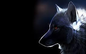 wolf wallpapers hd e hd wallpaper